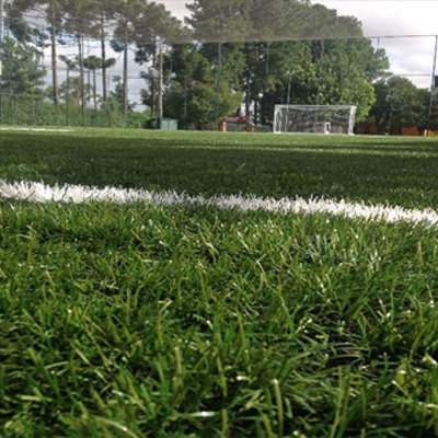 Grama natural é ideal para construir campo de futebol