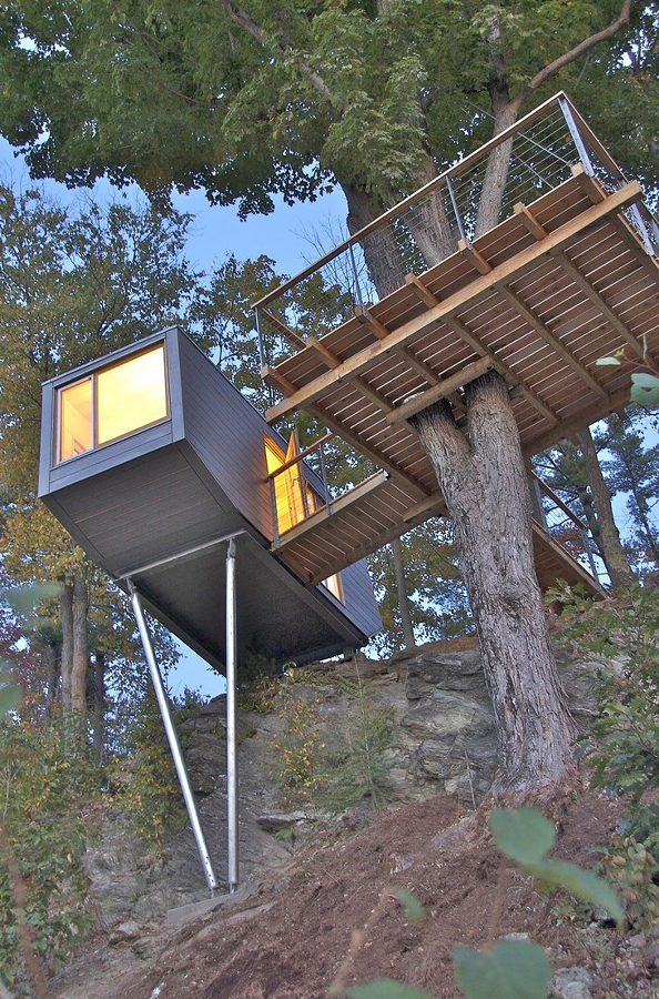 Cliff Tree House