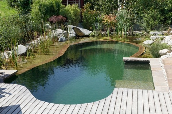 Como poderia construir uma piscina natural habitissimo for Construccion de piscinas naturales ecologicas